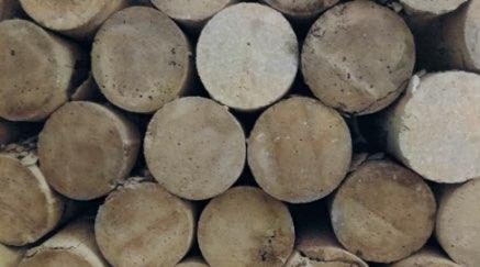 El fallo en las probetas de hormigón en Isostatika
